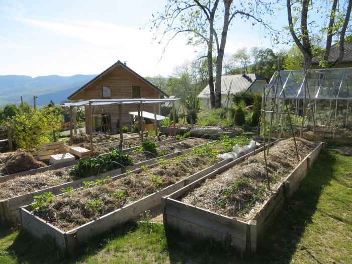 Objectif au potager : être autonome en légumes