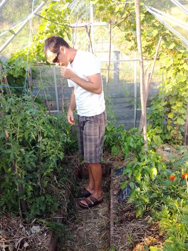jardinier dans serre