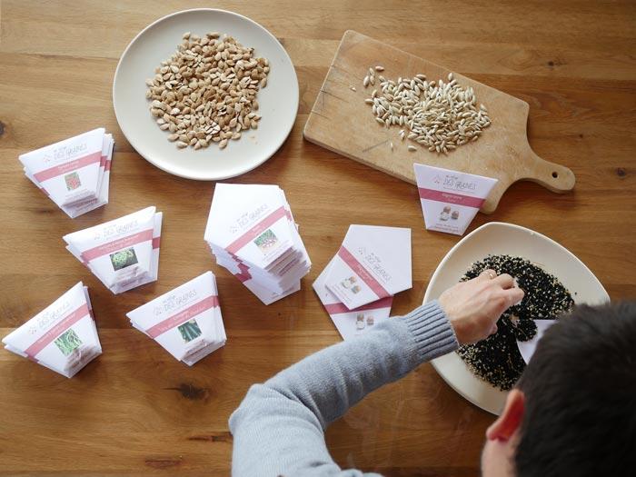 sachet graines oignons