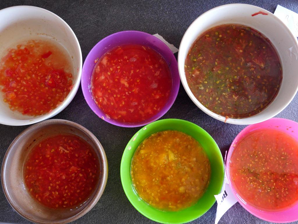 Fermentation des graines de tomates