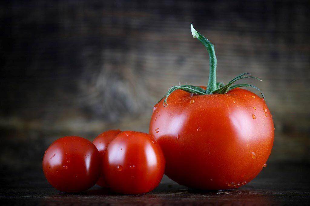 famille de tomates