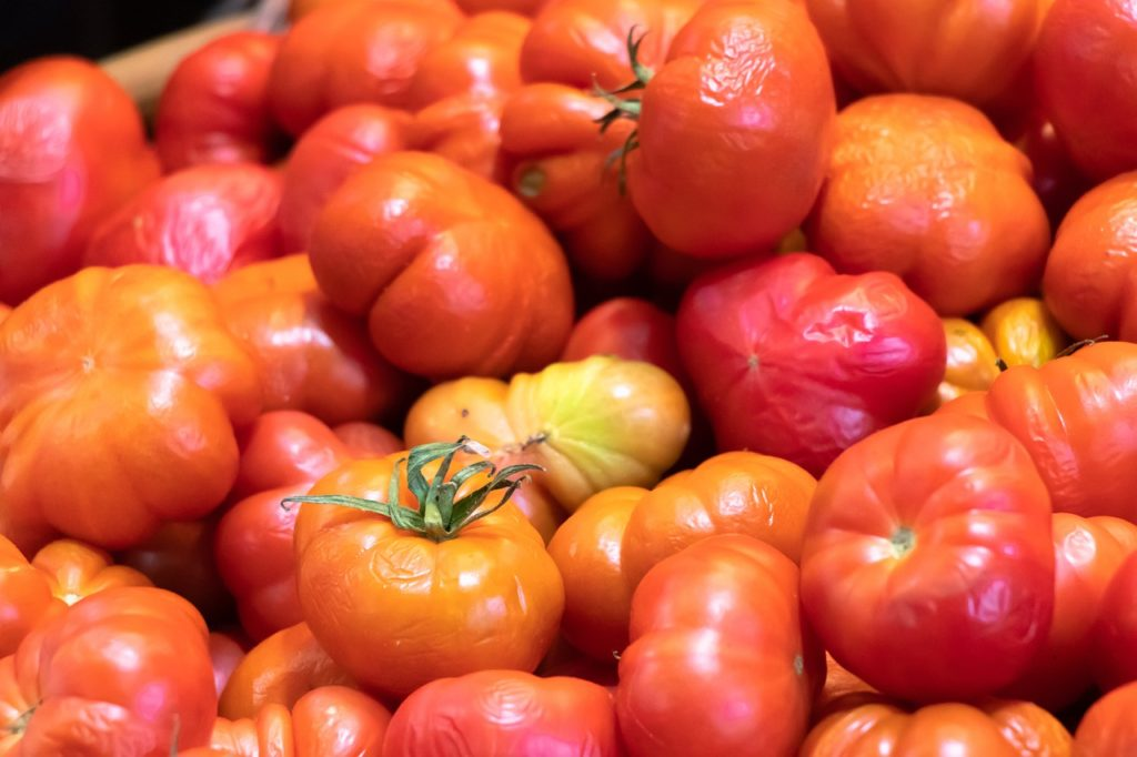 Tomates trop mûres