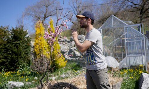 Hortithérapie et jardin