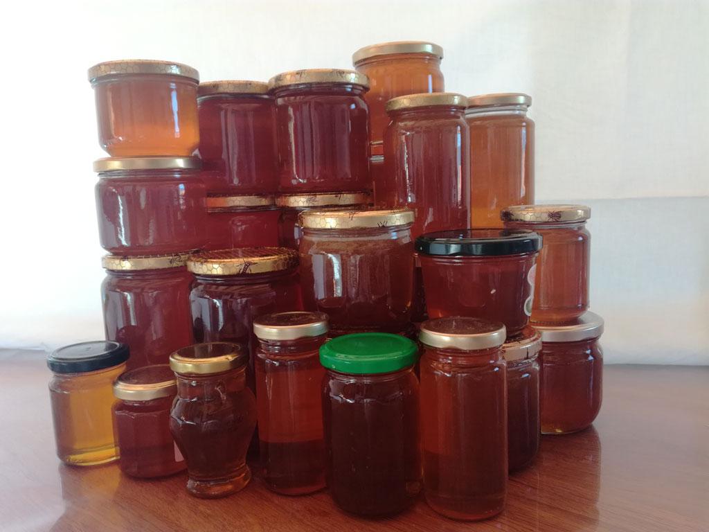 Pots de miel pour une autonomie annuelle